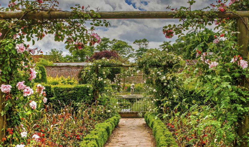 Escape to a peaceful coastal garden