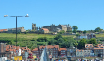 Curious About Whitby