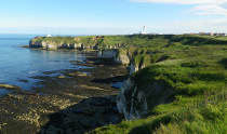 YWT Flamborough Cliffs